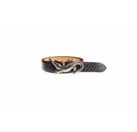 Gürtel Giftiger Gecko